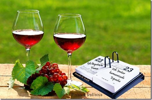 Vinho e delicias sobre vinho agenda 2013 feiras internacionais de vinhos - Salon des vignerons independants nice ...