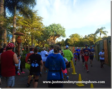 Mickey's Jingle Jungle 5K (29)