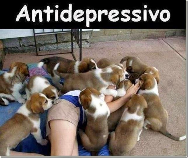 antidepressivo_thumb[1]