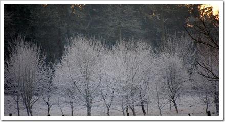 16 Jan 5 16-01-2012 16-44-13
