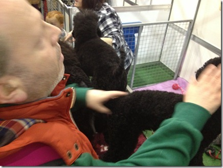 Photo 11-11-2012 11 32 23