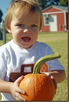 Pumpkins 0442