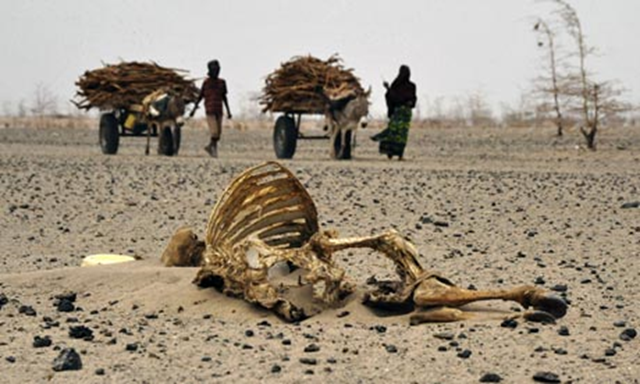 Climate change is amplifying risks from drought, floods, storm and rising seas. Photo: Simon Maina / AFP