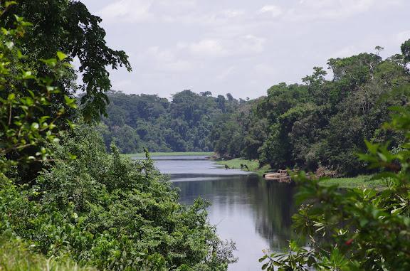La Nyong à Ebogo. Cameroun, 8 avril 2012. Photo : J.-M. Gayman
