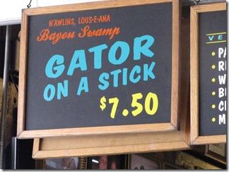 Gator06-05-13a