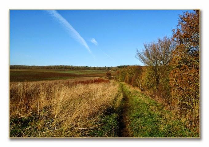 SSNR Sunshine walk 1 view