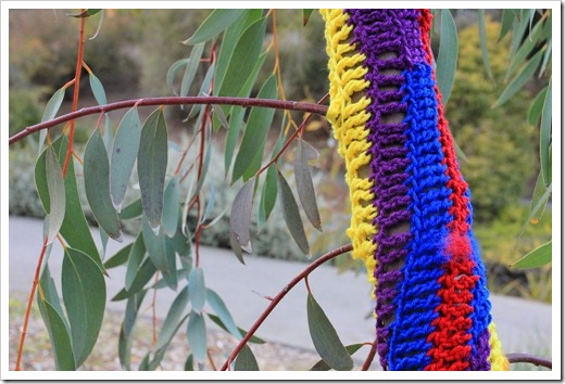 130119_UCDA_AustralianCollection_Natural-Transformations-yarn-bombing_32