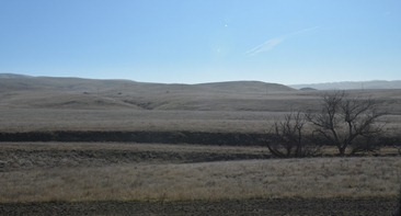 gray brown dull hills of California east of Paso Robles