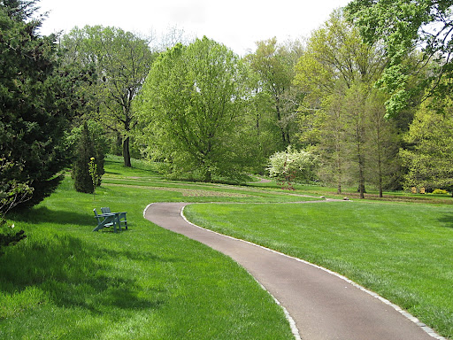 A winding path leads toward the serpentine beds.