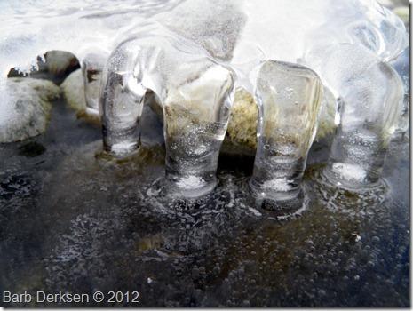 Barb Derksen Ice 2012  (11)