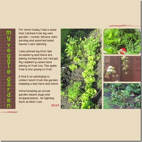 veggie-garden