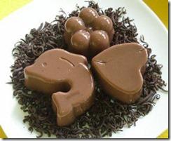 Puding Cokelat Manis Aneka Bentuk