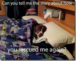 Story-how you-adopted me