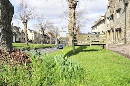Imagini Anglia: Oxfordul verde