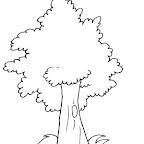 Dibujos dia del arbol (3).jpg