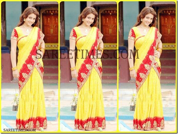 Suhani_Designer_Saree
