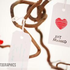 Marwell-Hall-Wedding-Photography-LJPhoto-CSS-(135).jpg