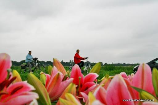 fietsvierdaagse venray ook in overloon 26-07-2011 (9).JPG