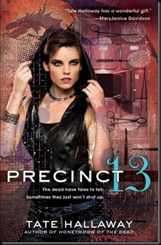 precint-13