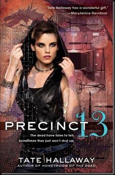 precint-13