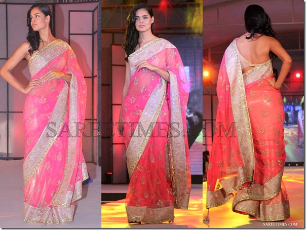 Manish_Malhotra_Pink_Embroidery_Saree