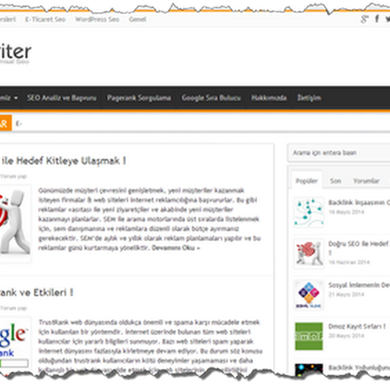 Blog Tanıtımı: SEO Kriter