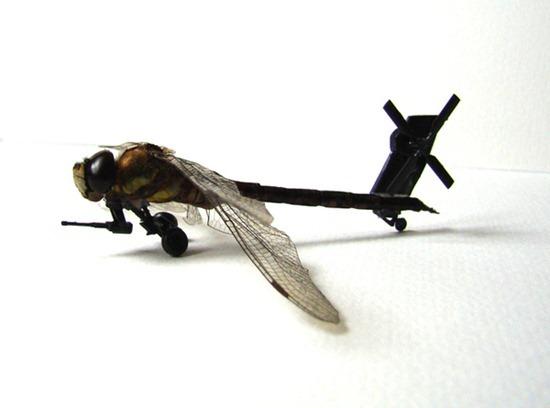 Exército de insetos 02