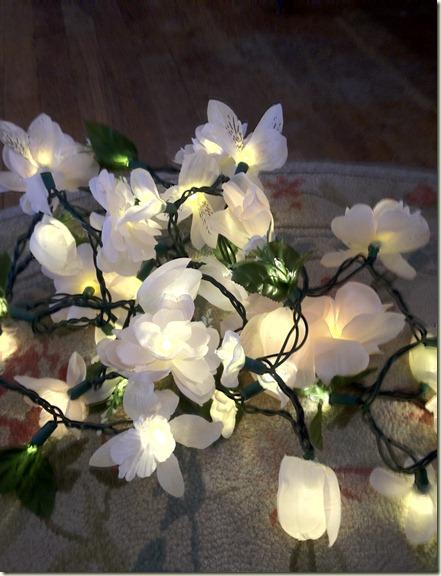 Flowers 012
