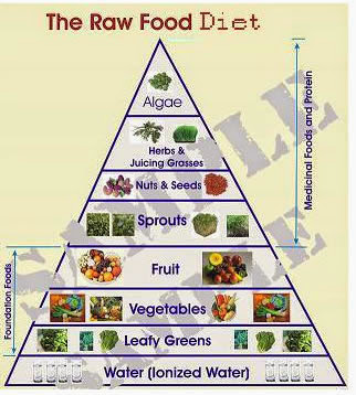e10-dieta-crudista-piramide-alimentacion.jpg