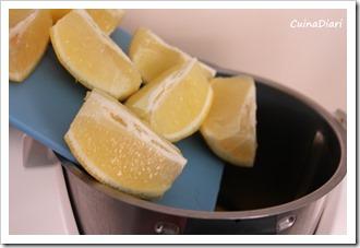 7-granissat  llimona cuinadiari-1