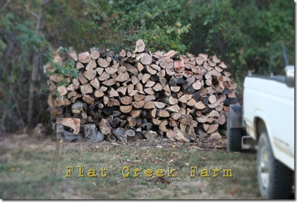 wood1