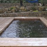 Piscine bois © Modern Pool