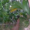 seychelles8_20070412_1012889807.jpg