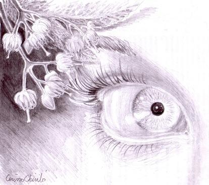Flori de tei povestea ei - Ochiul iubitei lui Eminescu desenat in creion