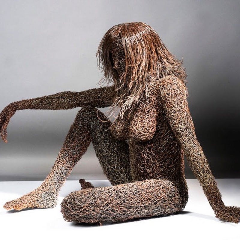 Iron Wire Sculptures by Mattia Trotta