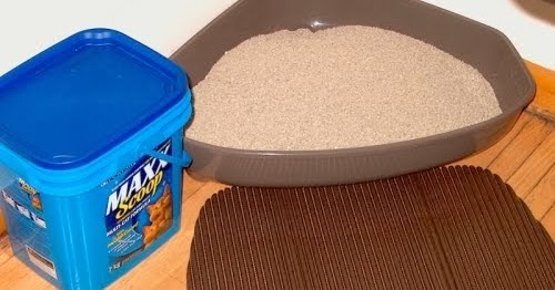 A Mum N The Oven Alternative Uses For Cat Litter