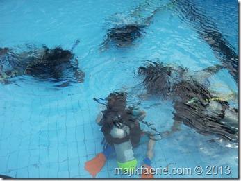 97 scuba course (640x480)