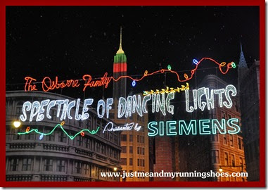Osborne Family Spectacle of Dancing Lights (19)