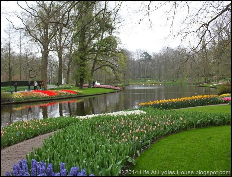 Keukenhof Gardens 20