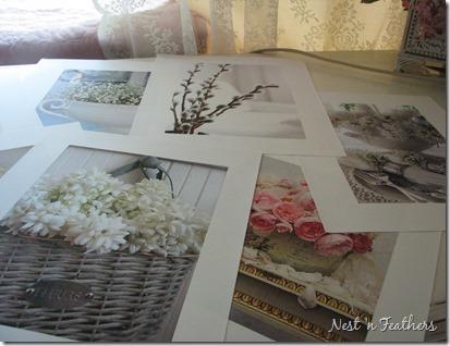 0525 Window IMAGES