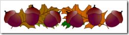 acorns divider