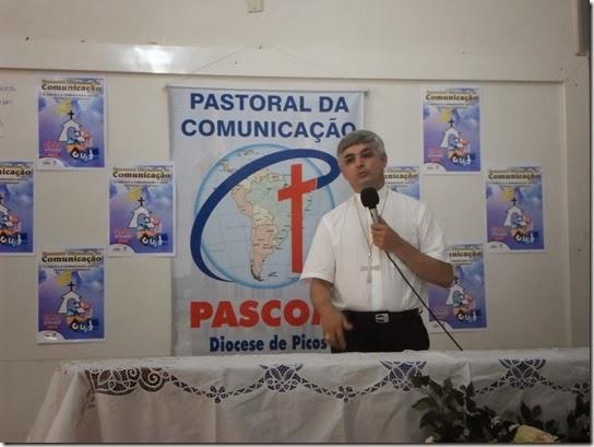 pascom junco 2013 (1)