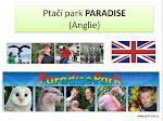 Paradise Park Anglie