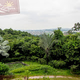 Jardim Botanico  - Guayaquil - Equador
