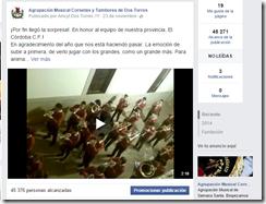 2  Agrupación Musical Cornetas y Tambores de Dos Torres