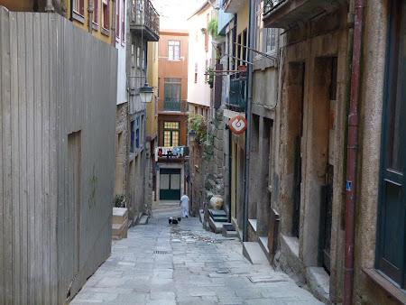 Imagini Portugalia: ulite sarmane in Porto