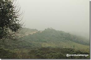Neblina 1