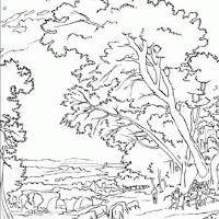 3-dibujos-colorear-paisajes-g.jpg
