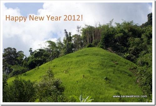 hill_paddy_padi_bukit