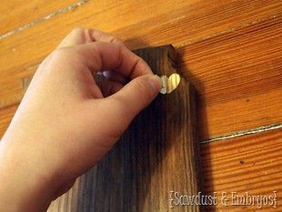 DIY State Plaque {Sawdust & Embryos}
